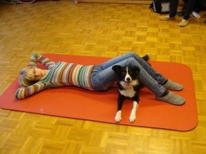 Therapiehund unter den Beinen